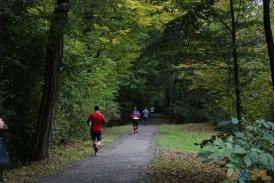 Leśna ścieżka a na niej biegacze