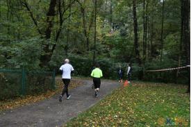Biegacze  w tle zielony płot