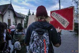 """Mężczyzna trzymający baner z napisem """"#PIEKŁOKOBIET"""""""