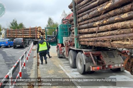 zdjęcie ze strony katowice.witd.gov.pl