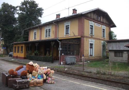 Misie czekają na ostatnie pozwolenia,a potem zapraszają do niezwykłego miejsca w Ustroniu fot. Dworzec Dobrych Myśli/facebook