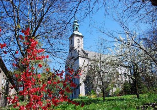 Kościół Jezusowy w Cieszynie. Źródło: facebook.com/luteranie.cieszyn