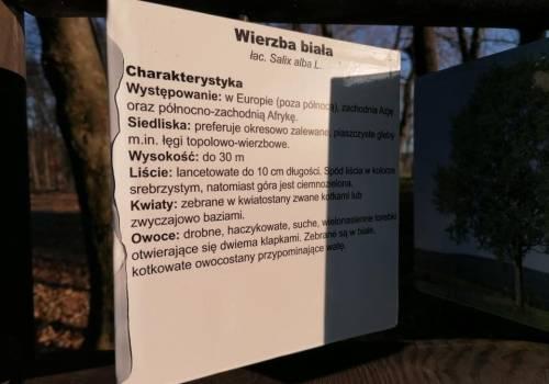 fot. Gmina Skoczów/ profil w mediach społecznościowych