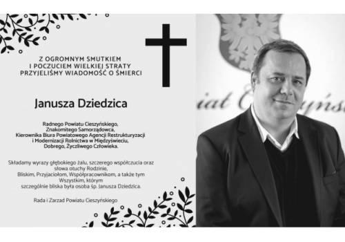 Grafika ze strony Powiatu Cieszyńskiego