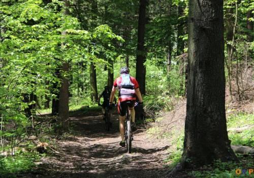 Kolarstwo górskie to coraz bardziej popularna forma wypoczynku w Beskidach. fot. ARC OX.PL