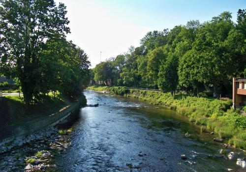 Rzeka Olza w Cieszynie. Fot. KR/Ox.pl