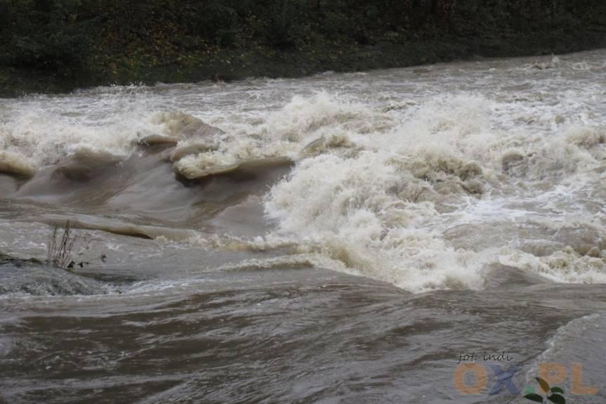 Rzeka Olza