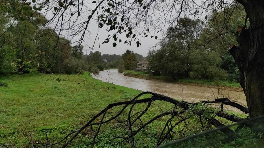 Rzeka Piotrówka w Zebrzydowicach